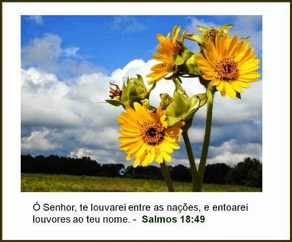 Mensagens E Palavras De Fé: Mensagens De Fé Da Palavra De Deus: Mensagem Evangélica De