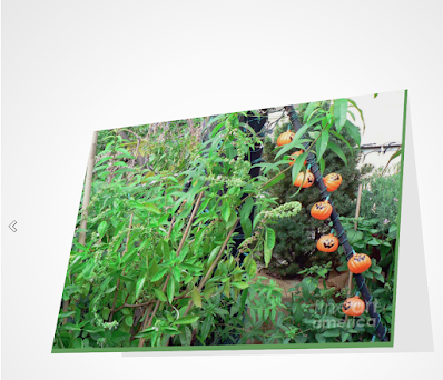 "This screen-shot features a Halloween card which has an image imprinted on it. The picture was taken in my garden when decorated for Halloween. It shows eight little pumpkin outdoor lights amongst the flora. The actual card is sized 5"" by 7"" and  can be purchased via Fine Art America (AKA FAA).  They produce the cards on digital offset printers using 100 lb paper that has a UV protectant. The image is semi-gloss and the inside of the card is matte and blank so one can write a message, but if you prefer, FAA can customize any text or message that you want to include. Purchase info is @ https://fineartamerica.com/featured/halloween-in-the-garden-patricia-youngquist.html?product=greeting-card"