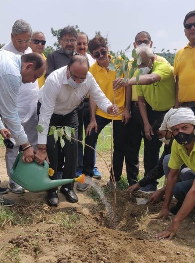 गुरुग्राम को हरा-भरा बनाने में हर व्यक्ति लगाए पेड़: सुधीर सिंगला
