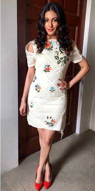 Actress Amyra Dastur Latest Hot Pics Actress Trend