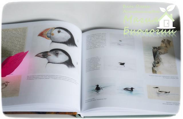 биологический рисунок-магия-биологии-книги-Формозов