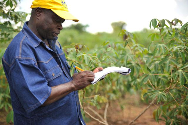 5 Etapes importantes pour lancer une exploitation agricole rentable