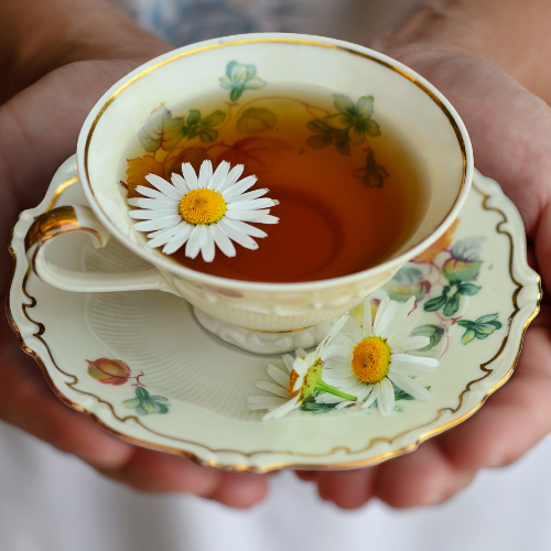 Conheça os cinco benefícios ao consumir o chá regularmente.