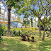 jardins e hotel Pestana Promenade