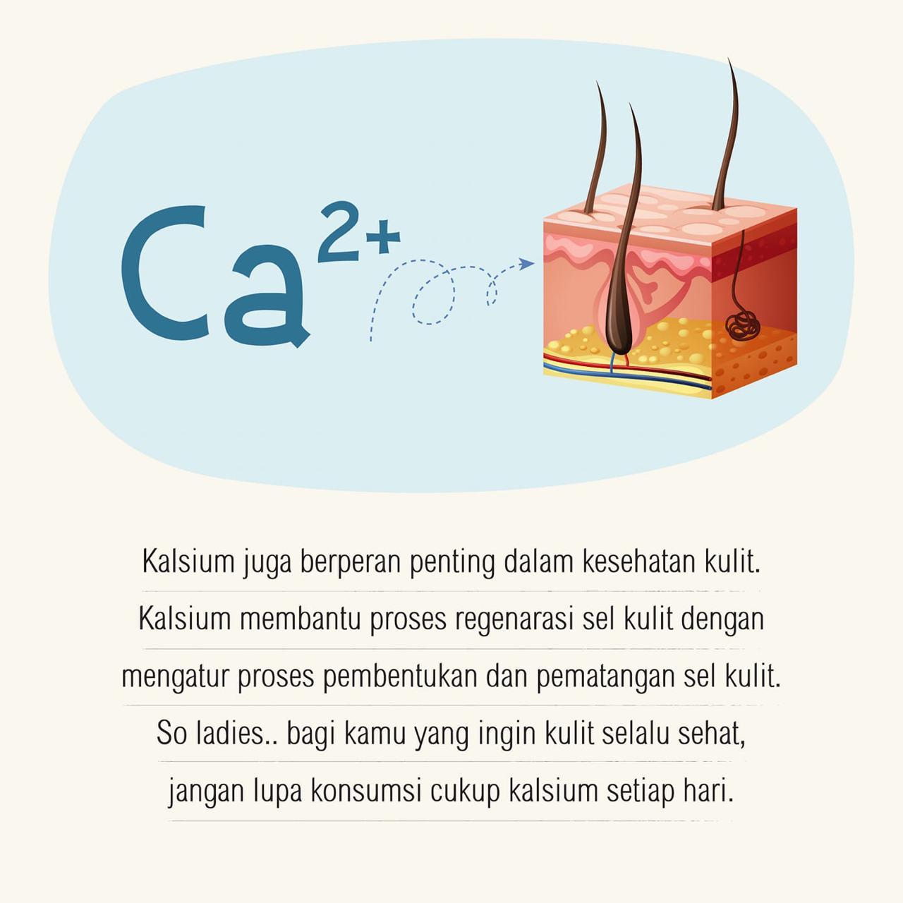 Apa itu Kalsium?