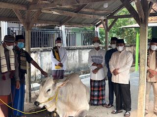 Idul Adha Tahun 2021, Pemprov Lampung Berkurban 36 Sapi dan 10 Kambing