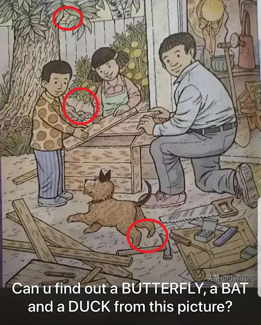 Can You Find Out a Butterfly Answer