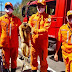 Barreiras: Macaco é encontrado em passeio ferido e com queimaduras