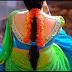 உள்ளாடையால் சர்ச்சையில் சிக்கிய வாரிசு நடிகை..! - கரும்பை போல பிழிந்த நடிகர்..!