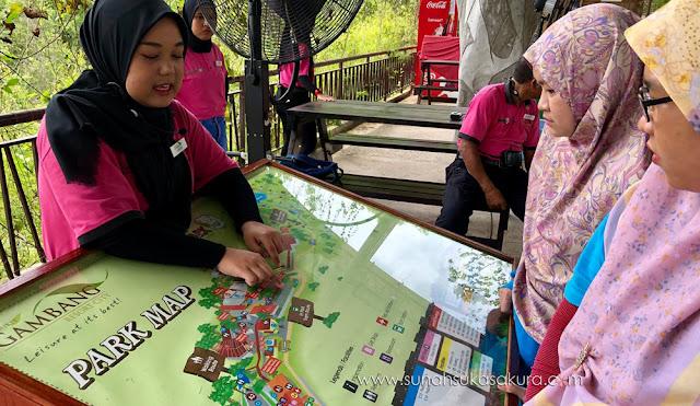 12 Perkara Menarik Yang Boleh Dilakukan di Taman Safari Bukit Gambang
