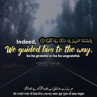 download Quran Verse pics in englsih