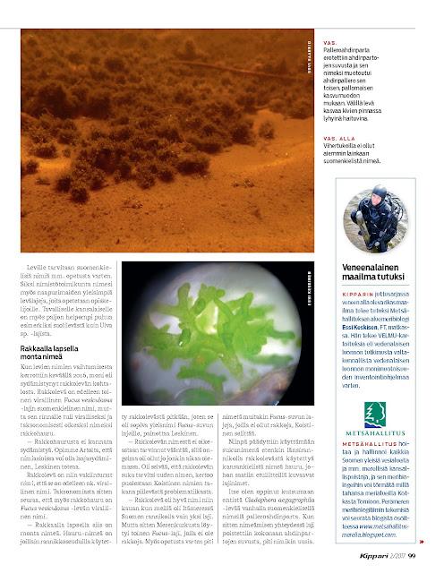 Valokuva Kippari-lehden artikkelin toisesta sivusta