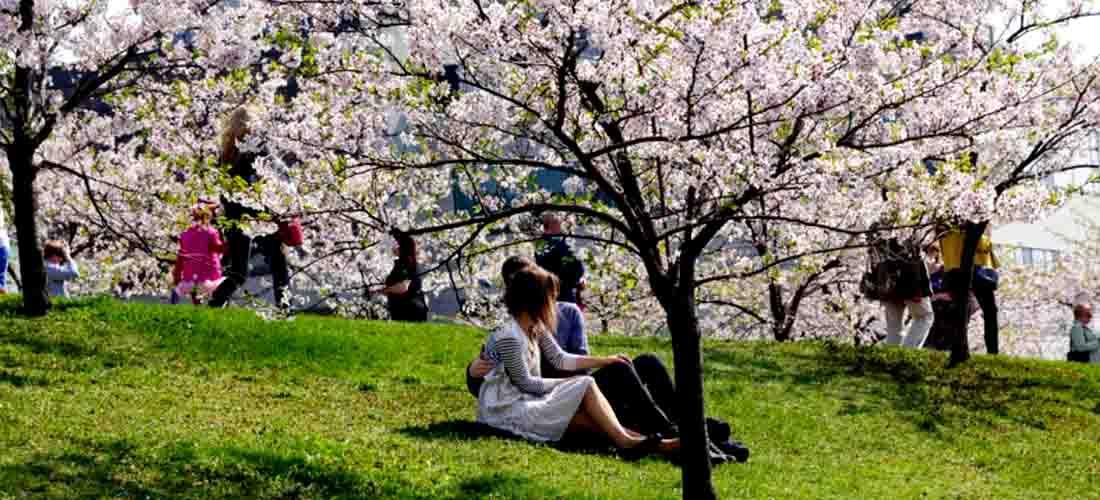 Mitos Tentang Percintaan Yang Ada Di Jepang Nihongoenak