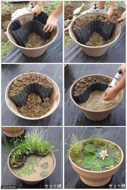 Crea un Mini Estanque Jardin en una Maceta