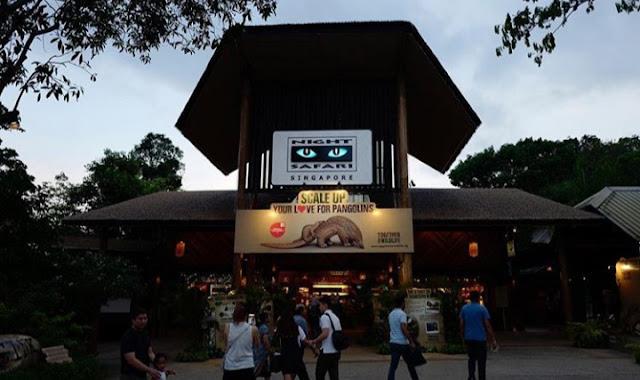 Singapore Night Safari, hotel di singapore yang dekat dengan tempat wisata 2020, objek wisata yang paling terkenal di singapura adalah brainly 2020, daftar wisata singapore 2020, tempat wisata romantis di singapore 2020, tempat wisata di malaysia 2020, tempat wisata sekitar little india singapore 2020, gambar kota singapura 2020, paket wisata singapore 2020, pemandangan singapore 2020