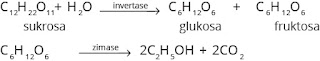 reaksi pembuatan etanol