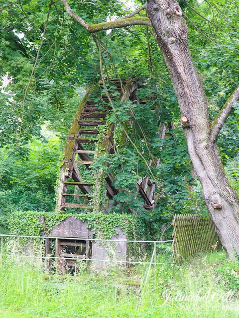 altes Mühlrad Bad Münster Kurpark