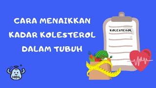 Menaikkan kolesterol baik