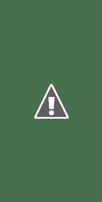 Les annonces publicitaires, les featured snippets et les Answers Boxes poussent les résultats organiques pour Hotels.com et Expedia bien en dessous de la ligne de flottaison. Cela les prive de la plupart de leur trafic organique