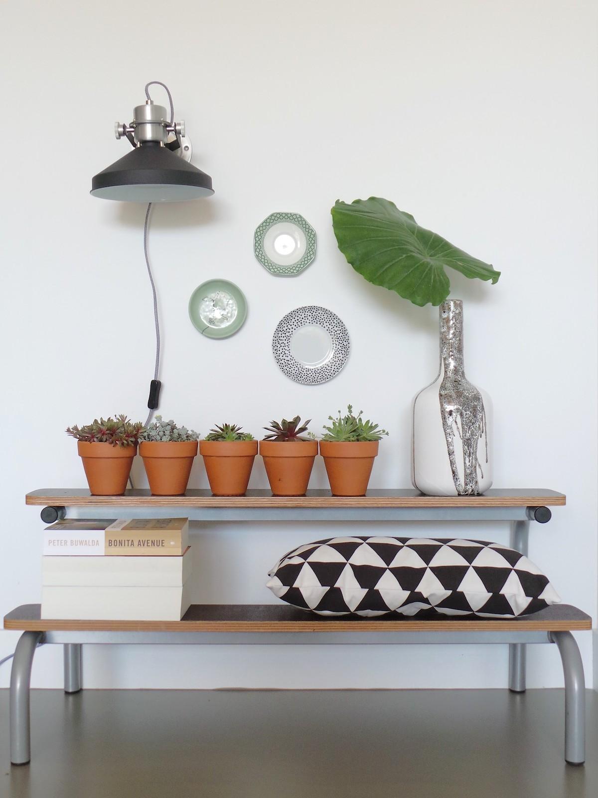 Baldas con plantas y lámpara de pared con cable