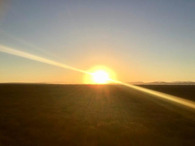 Sunrise, Meerkat Experience, Oudtshoorn, South Africa