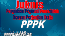 Juknis Pengadaan Pegawai Pemerintah Dengan Perjanjian Kerja (PPPK)