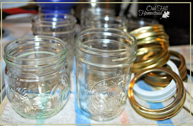 Empty canning jars and rings