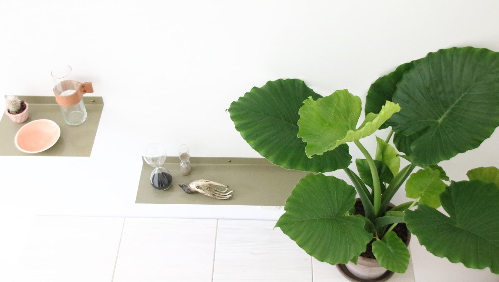 Designedlifeblog.blogspot.com Shelfies