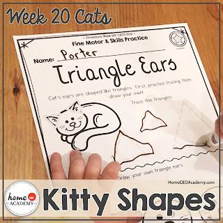 https://www.teacherspayteachers.com/Product/Cats-Preschool-Unit-Printables-for-Preschool-PreK-Homeschool-Preschool-3576494