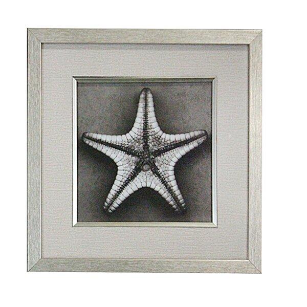 Starfish Wooden Wall Decor