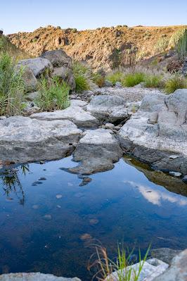 Wanderung zu den Wasserfällen im Barranco del Toro | San Agustín/Maspalomas | Wandern auf Gran Canaria 21