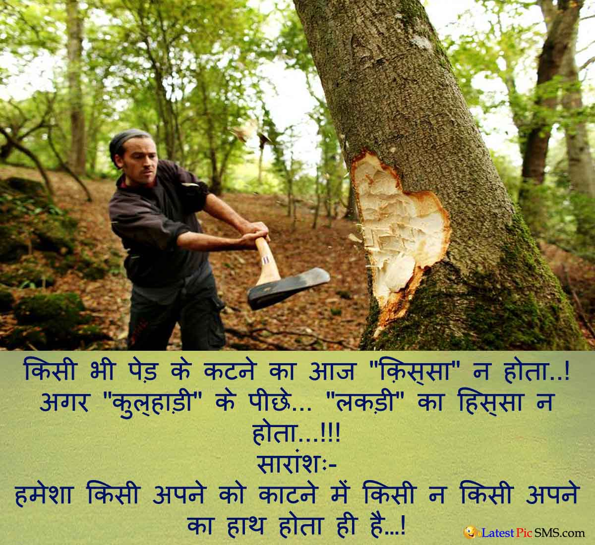 Don't Cut Tree SMS
