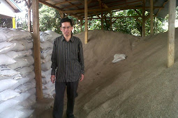 Jual Pasir Silika |0821 4002080|   Tangerang | CIkarang Bekasi | JAKARTA TIMUR | BOGOR |DEPOK | SURABAYA