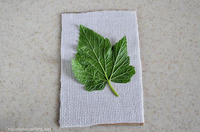 Прикрепляем листок