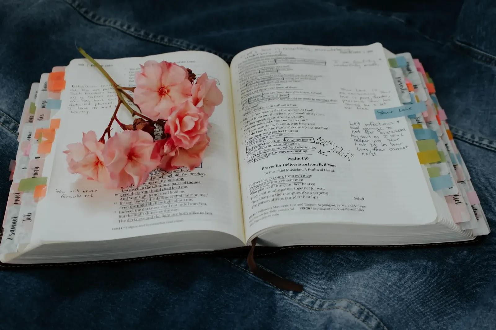 海外移住 英語 勉強