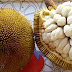 The Health Benefits of Marang Fruit