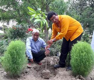 मानव जीवन की रक्षा के लिये पौधरोपण आवश्यकः देवेश | #NayaSaberaNetwork