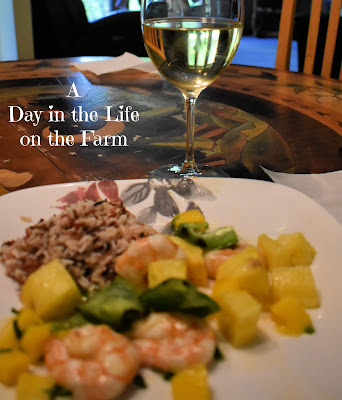 Grilled Shrimp Skewers with Tropical Fruit Salsa