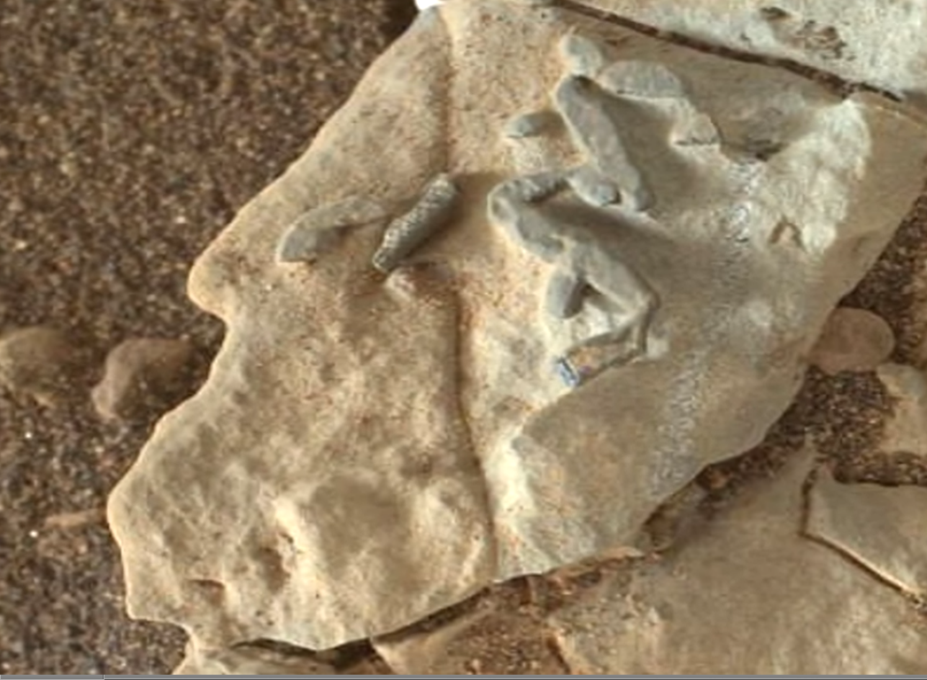 ¿Se han encontrado rastros de fósiles en Marte? Marte%2B1