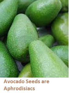 Avocado Seeds are Aphrodisiacs