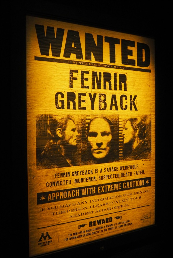 wanted fenrir greyback