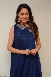Pragya Jaiswal in beautiful Blue Gown Spicy Latest Pics February 2017 050.JPG