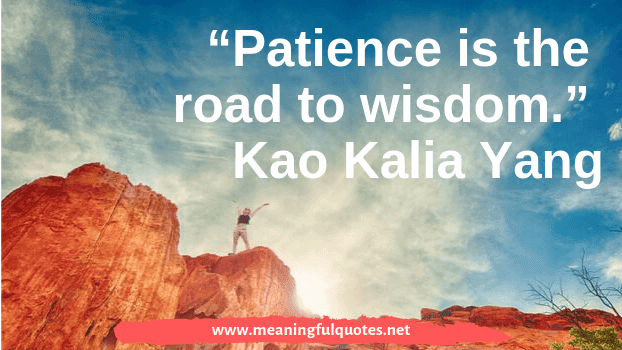Patience Is The Companion Of Wisdom Quotes