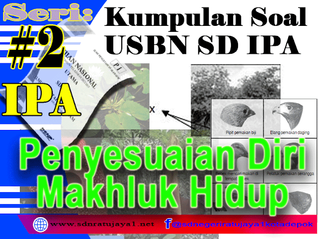 Kumpulan Soal USBN SD IPA 2019/2020 tentang Penyesuaian Diri Adaptasai Makhluk Hidup