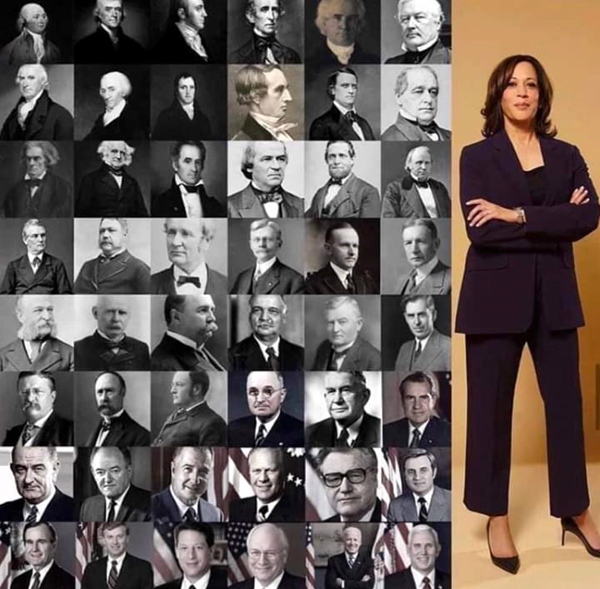 Kamala Harris and the 48 vice presidents who came before her.