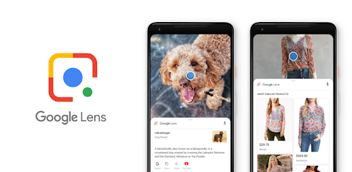 What Is Google Lens & How Can You Find Its Top Features ?