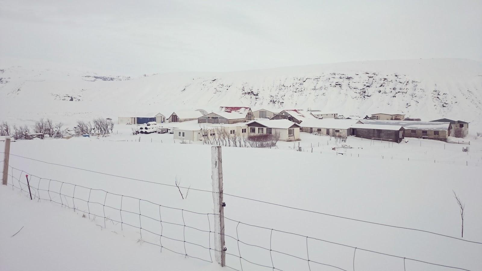 islandzka farma zimą, zima w Islandii, Islandia, Islandia zdjęcia