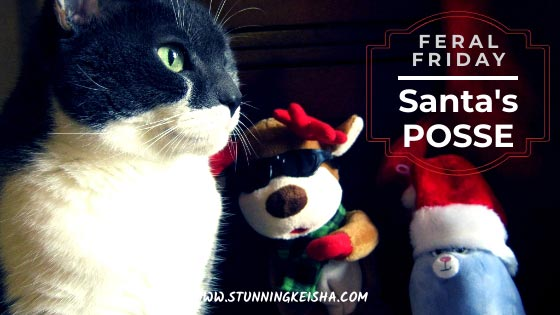Feral Friday: Santa's Posse