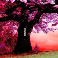 WowEscape-Fantasy Pink Forest Escape