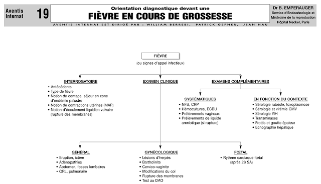 Cours fi vre en cours de grossesse sofiotheque - Symptome fausse couche debut grossesse ...